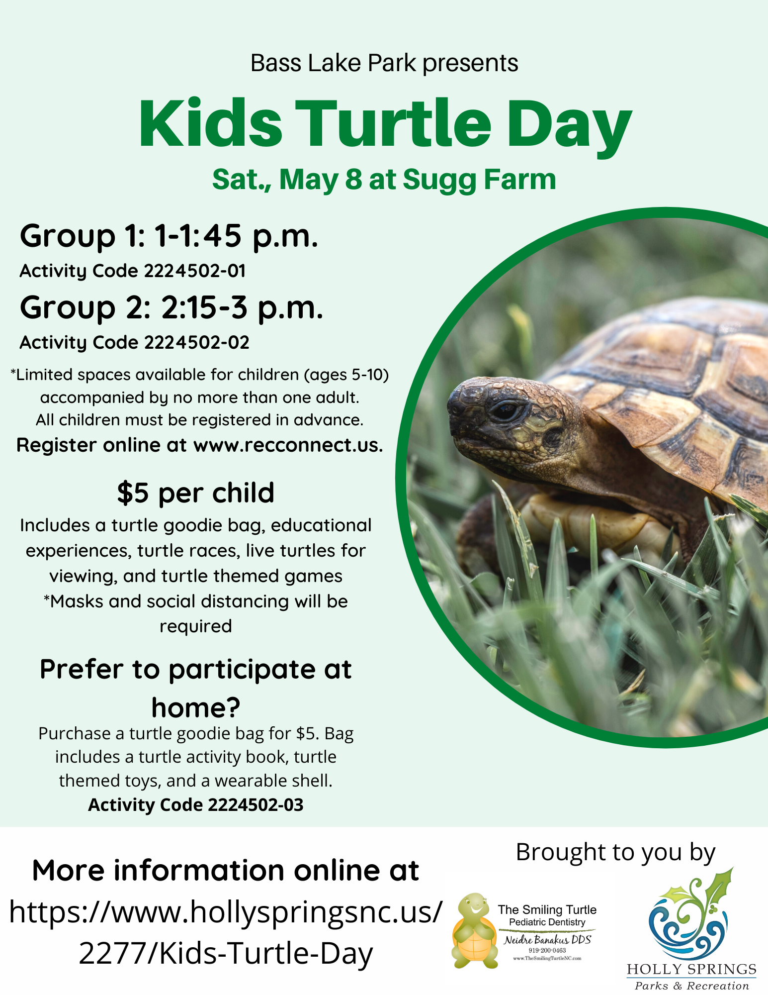 Kids Turtle Day
